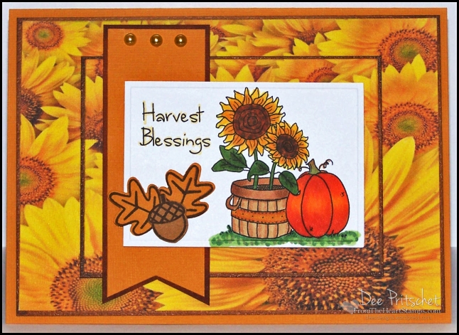 Harvest Blessings dp